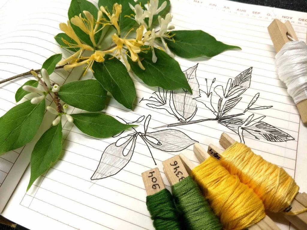 סקיצה של פרח, ליד הפרח ולצידם חוטי רקמה בצבעים תואמים