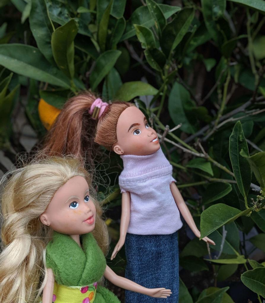 בובות בגינה מביטות מעלה